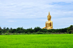 Giant golden buddha Royalty Free Stock Photos