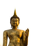 The giant golden Buddha statue. Isolated in white background Royalty Free Stock Photography