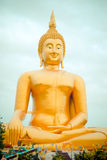 Giant golden buddha statue in Thailand. Royalty Free Stock Photos
