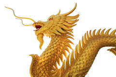 Giant golden Chinese dragon on isolate background Royalty Free Stock Images