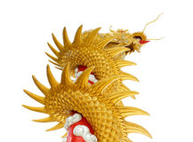 Giant golden Chinese dragon on isolate white background Stock Image