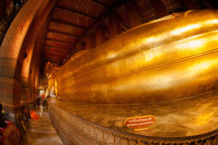Giant golden reclining Buddha at Wat Pho, Bangkok, Thailand Royalty Free Stock Image