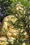 Giant Golden Statue of Buddha stock photo