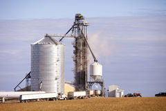 Giant grain dryer. Receiving loads of grain Royalty Free Stock Photo