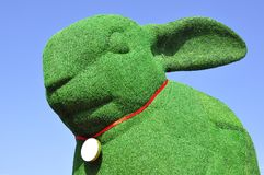 Giant green rabbit Stock Images
