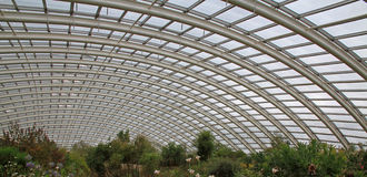 Giant Greenhouse Roof. The roof of a giant greenhouse, from inside the structure Stock Images