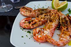 Giant grilled shrimp with lime dish Royalty Free Stock Photo