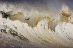 Giant hollow wave. Giant wave breaking on the north shore of oahu Stock Image