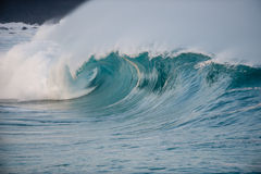 Giant hollow wave. Giant wave breaking on the north shore of oahu Royalty Free Stock Photos