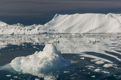 Giant Icebergs of Disko Bay Royalty Free Stock Photography