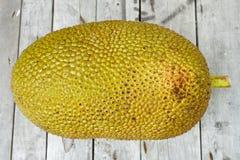 Giant Jackfruit Royalty Free Stock Photography