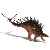 Giant kentrosaurus dinosaur Royalty Free Stock Photo