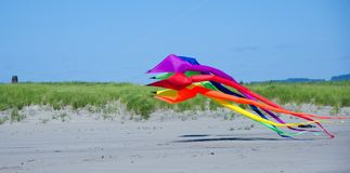 Giant kite takes off in Long Beach.  Stock Images