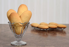 Giant lady finger cookies in a glass dish Royalty Free Stock Photo