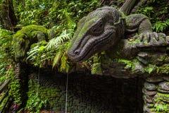 Giant Lizard in Sacred Monkey Forest Sanctuary, Ubud, Bali Stock Photos