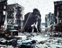 Giant mammot in destroyed city Royalty Free Stock Images