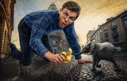 Giant man and little elephant Stock Images