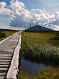 Giant mountain. Wooden path over the moors to the highest mountain of the Czech Republic, Snezka Royalty Free Stock Images
