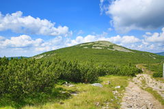 Giant Mountains (Czech: Krkonose), Riesengebirge, Czech, Polannd Royalty Free Stock Photos