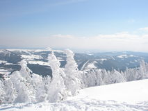 Giant mountains in the winter royalty free stock images
