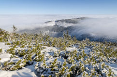 Giant Mountains in winter, Czech Republic Royalty Free Stock Photos