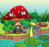 A giant mushroom house with a dragonfly Stock Image