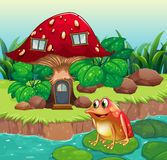 A giant mushroom house near the river with a frog Stock Photo