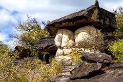 Giant mushroom stone Stock Image