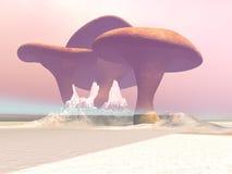 Giant Mushrooms Stock Photos