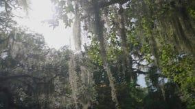 Brookgreen Gardens / South Carolina / USA