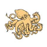Giant Octopus Fighting Hydra Drawing Stock Photo