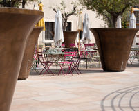 Giant olive tree pots in Marseille, Franc. Oversized olive tree pots near Hôtel de Ville in Marseille, France Royalty Free Stock Image
