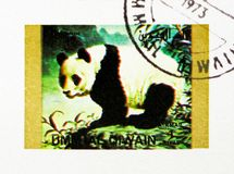 Giant Panda (Ailuropoda melanoleuca, Animals serie, circa 1972. MOSCOW, RUSSIA - NOVEMBER 10, 2018: A stamp printed in Umm Al Quwain shows Giant Panda ( stock photo