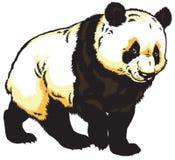 Giant panda. Bear isolated on white background vector illustration