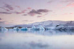 Giant pieces of ice flowing on and reflecting in cold lake with a huge glaciar behind, jokulsarlon glaciar lagoon, Iceland Stock Photos