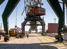 Giant port cranes at cargo terminal Stock Image