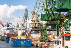 Giant port cranes at cargo terminal Royalty Free Stock Image