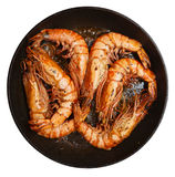 Giant prawns being fried on pan Stock Image