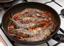 Giant prawns being fried on pan Stock Photography