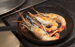 Giant prawns on hot pan Stock Images