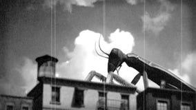 Giant Praying Mantis Monster stock video footage
