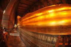 Giant Reclining buddha within the Wat Pho in Bangk Royalty Free Stock Image