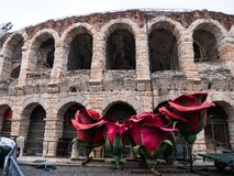 Giant red roses in front of the Verona Arena, a symbol of love, ideal to represent the concept of love stock photography
