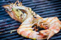 Giant river prawn grilled stock photography