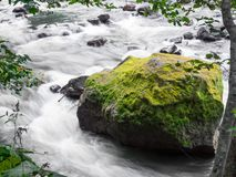 Giant rock with green moss in fast flowing river at Ryu Sei waterfall, Hokkaido, Japan. stock images