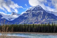 A giant rocky mountain in Jasper National Park with Athabasca River in the foreground Royalty Free Stock Photos