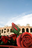 Giant rose and the arena Stock Photos