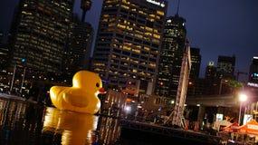 Giant Rubber Duck Stock Photos
