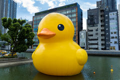 Giant Rubber Duck at Osaka Royalty Free Stock Photography