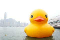 Giant Rubber Duck Visits Hong Kong Royalty Free Stock Photos